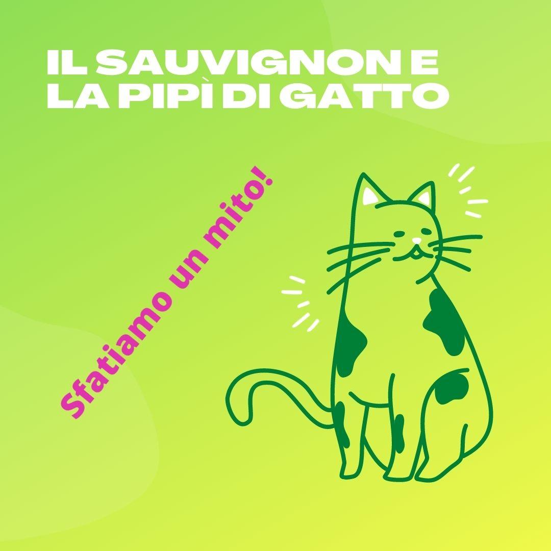 il sauvignon e la pipì di gatto. Disegno di un gatto su sfondo verde.