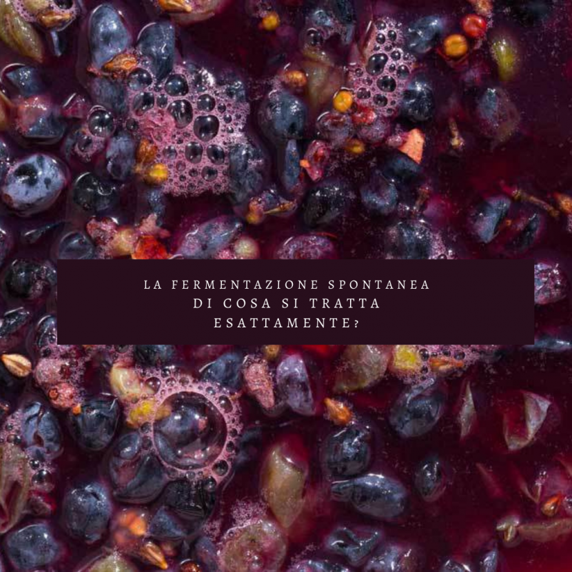 3-cose-da-sapere-sulla-fermentazione-spontanea